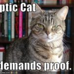 Meme: Skeptic Cat demands proof